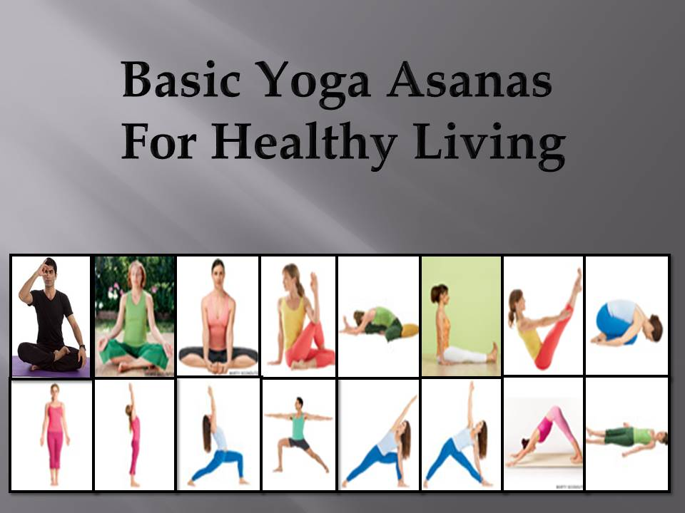 Basic Yoga Asanas For Healthy Living Wellness Haven Yoga