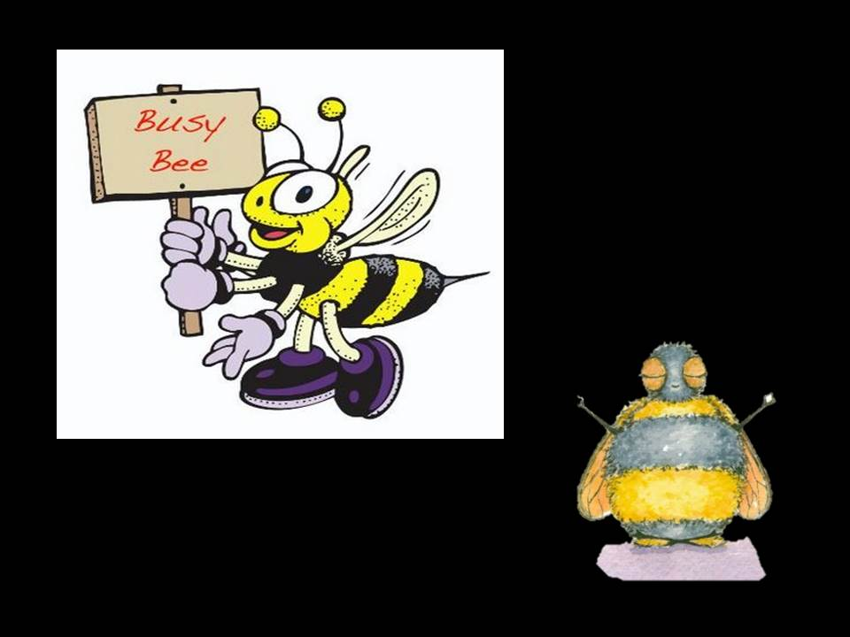 Busy Bee1